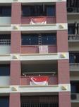 HDBflag2.JPG