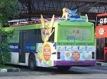 bussleepinangel1.jpg