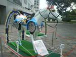 singaporecuphorse7.JPG